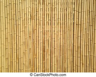 Yellow bamboo wall