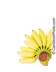 Yellow banana fruits Isolated on white backgrounds with vertical