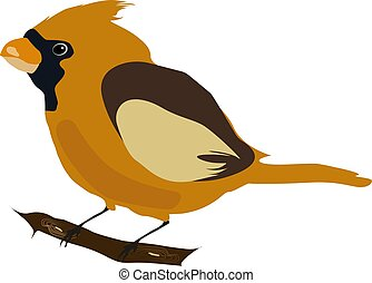 Yellow bird, illustration, vector on white background.