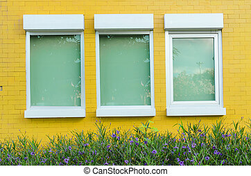 Yellow brick wall with windows little plant and flower