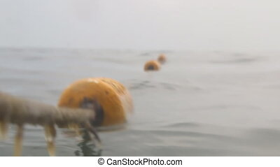 Yellow buoys floating on ocean or lake