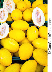 Yellow canary melons for sale
