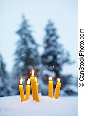 Yellow Candles In Snow