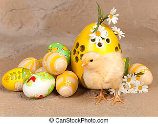 Yellow chick and easter eggs