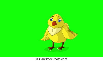 Yellow Chicken Stands and Pecks Chroma Key - Yellow Chicken...