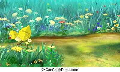 Yellow Chicken Walks and Pecks on a flower meadow in a sunny...