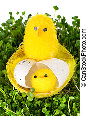 yellow chicklings on a grass