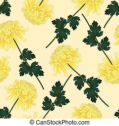 Yellow Chrysanthemum Flower on Beige Ivory Background