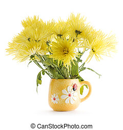 yellow Chrysanthemum flowers in vase on white background