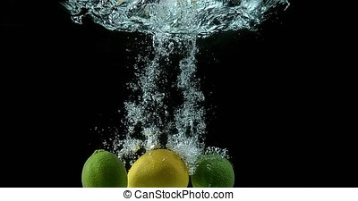 Yellow, citrus limonum, Citrus aurantifolia, Fruits falling...