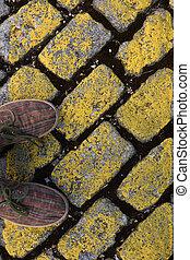 Yellow cobble,
