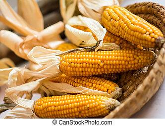 Yellow corns in the basket