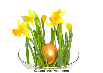 Yellow Daffodil flower with golden eater egg - Yellow...