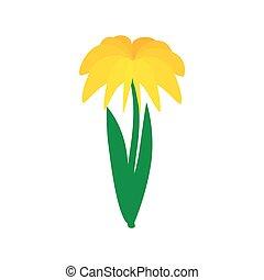 Yellow dahlia icon, isometric 3d style
