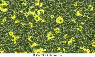 yellow daisy flower & leaves,spring scene.