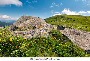 yellow dandelions on a grassy hillside. giant boulders on...