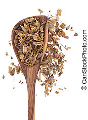 Yellow dock root herb used in herbal medicine in an olive wood spoon over white background. Rumex crispus.