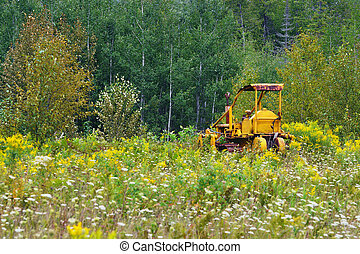 Yellow dozer rusting - An abandoned yellow dozer in a field ...