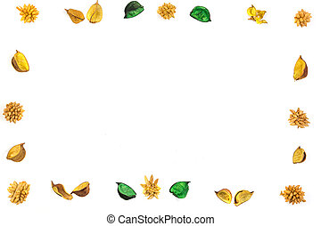 Yellow dried flowers, plants border frame on white background. Top view, flat lay.