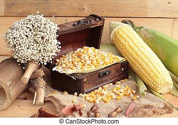 Yellow dry corn grain and corn fresh.