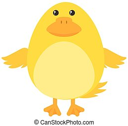 Yellow duckling on white background