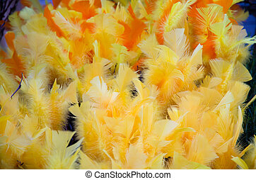 Yellow easter feathers