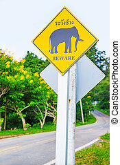 Yellow Elephant wanring sign on the road