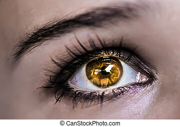 Yellow Eye Makeup. Beautiful Eyes Make-up. Macro