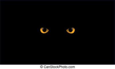 yellow eyes blink