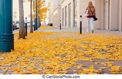 Yellow fallen leaves on cobblestones