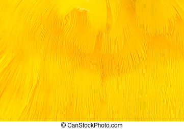 Yellow Feather Texture