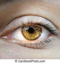 Yellow female eye macro. Vector