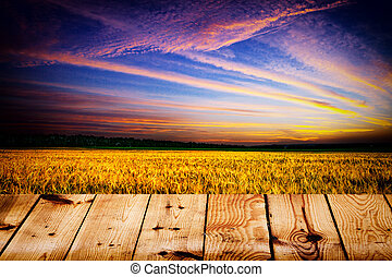 yellow field under blue sky. Wood floor