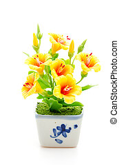 Yellow flower isolated white background