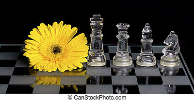 Yellow flower on black and white glass chess board with king, queen, bishop and knight