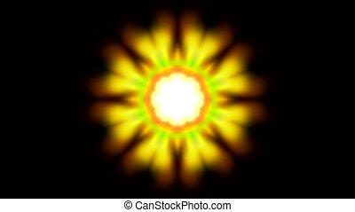 yellow flower pattern