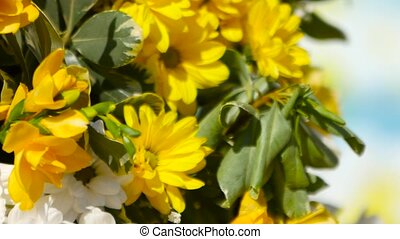 Yellow flowers and balloons are in the yard - Bouquet with...