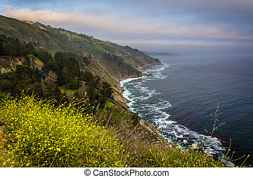 Yellow flowers and view of the Pacific Coast, in Big Sur, California.