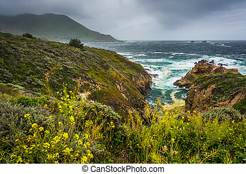 Yellow flowers and view of the Pacific Ocean at Garrapata State Park, California.