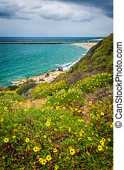 Yellow flowers and view of the Pacific Ocean from Inspiration Po