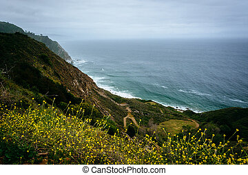 Yellow flowers and view of the Pacific Ocean in Big Sur, California.