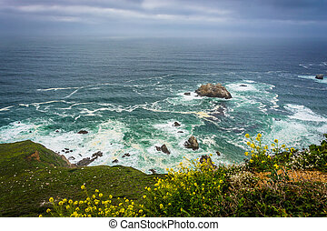 Yellow flowers and view of the Pacific Ocean, in Big Sur, California.
