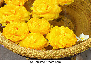 Yellow flowers floating in water