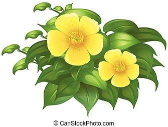 Yellow flowers in green bush illustration