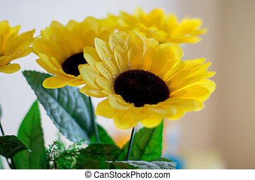Yellow flowers on a light background.