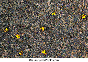 Yellow flowers on the stone floor.