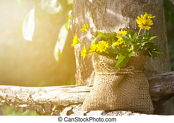 Yellow flowers on wood and tree in the nature at morning, soft focus