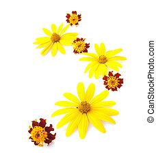 Yellow flowers ornament isolated on white background