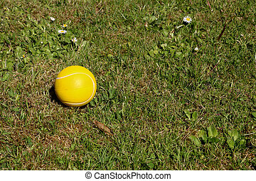 Yellow Foam Ball Lying in a Garden - Yellow foam rubber ...