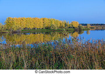 Yellow foliage of trees and blue sky reflected in the river surface